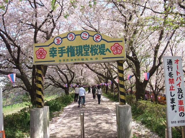 Blog2009_04110021