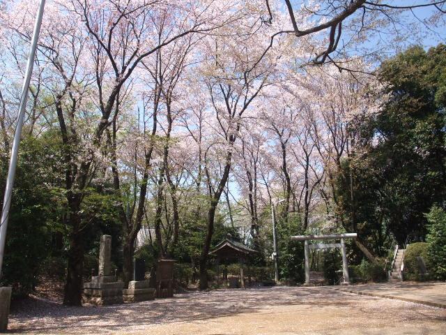 Blog2009_04090025