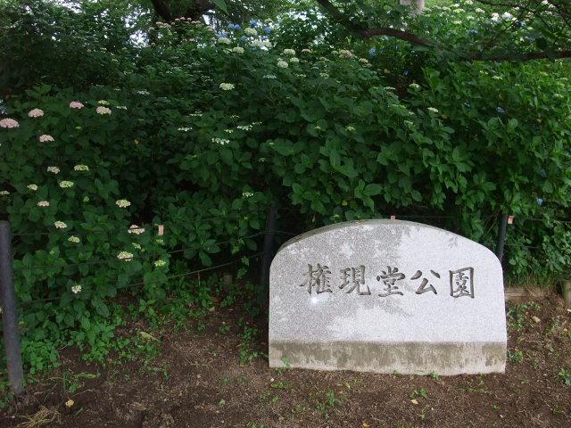 Blog2009_06090027