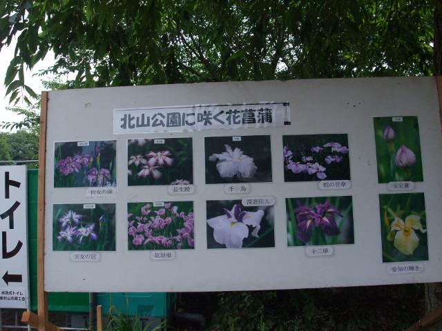 Blog2009_06120045