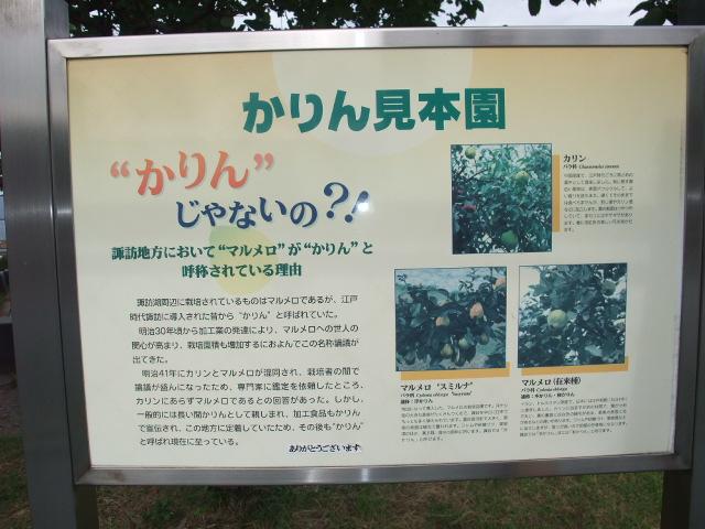 Blog2009_08060221