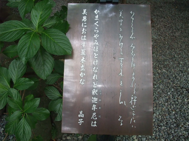 Blog2009_08260083