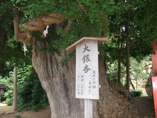 Blog2009_08260119