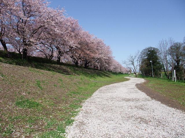 Blog2010_04130062