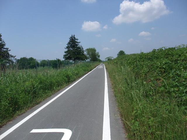 Blog2010_0531arakawa0010
