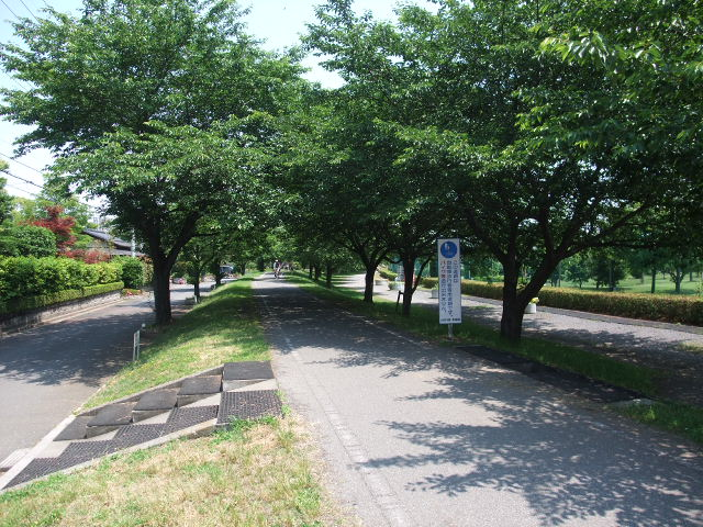 Blog2010_06040017