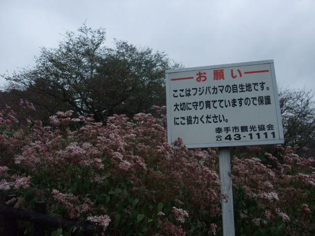 Blog2010_10250031