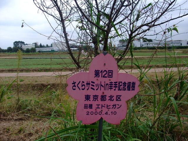 Blog2010_10250027