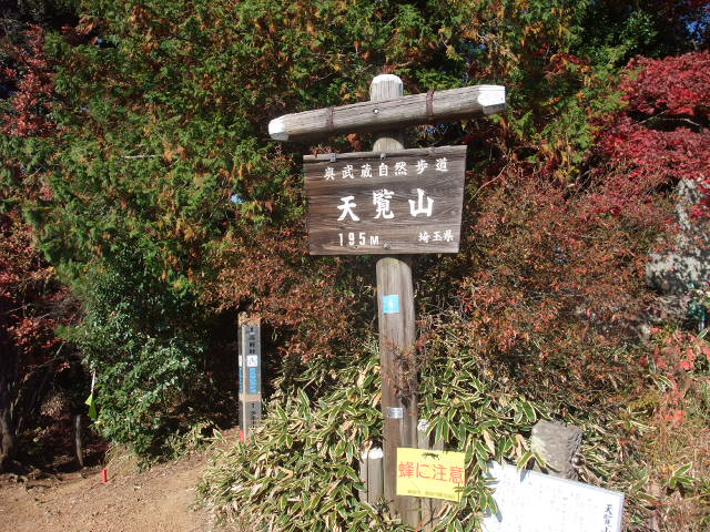 Blog2010_11190093