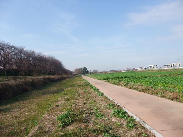 Blog2010_12060015