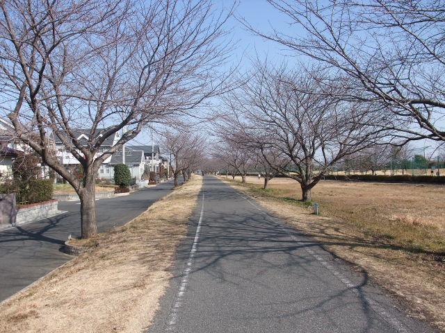 Blog2011_02070017