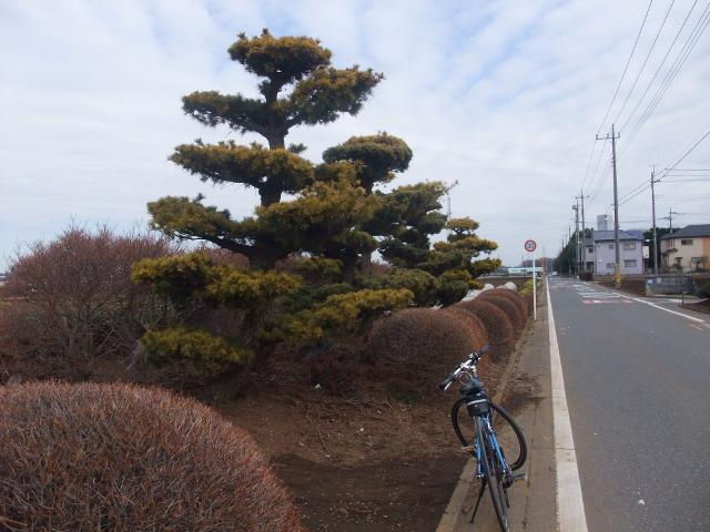 Blog2011_02190011