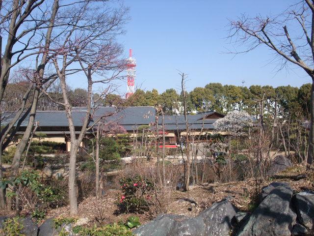 Blog2011_02230012