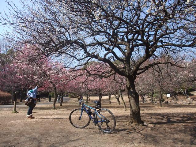 Blog2011_02230019