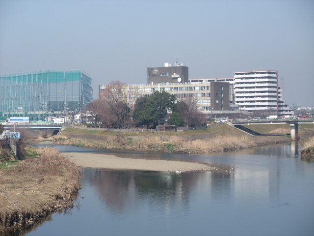 Blog2011_02250006