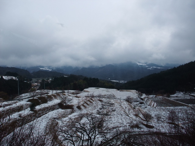 Blog2011_03080102
