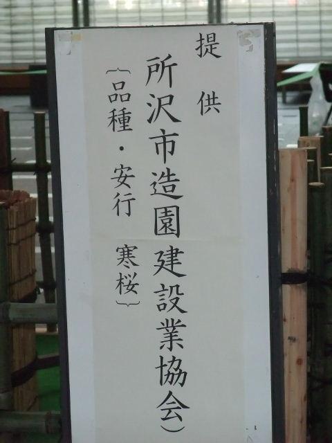 Blog2011_03120026