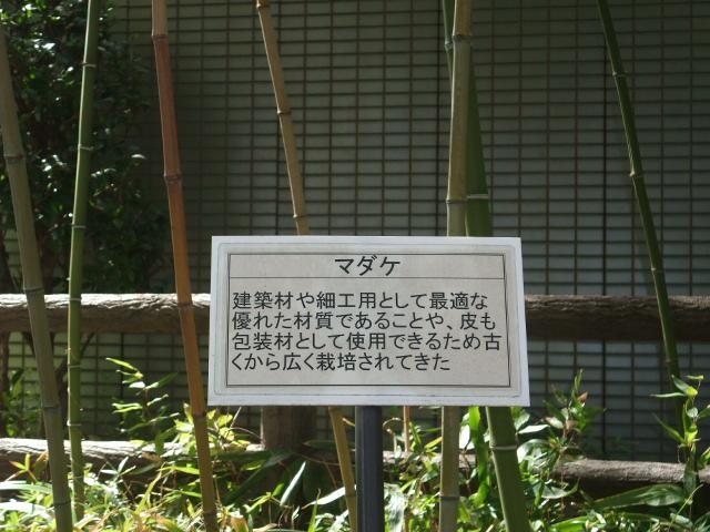 Blog2011_03120032