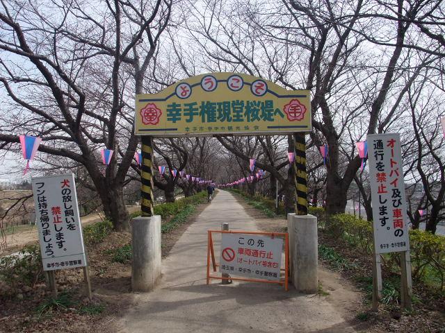 Blog2011_03170010