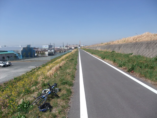 Blog2011_03190007