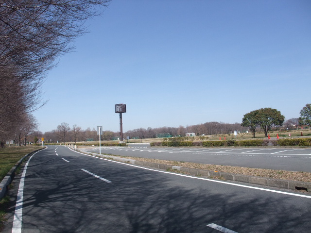 Blog2011_03190010