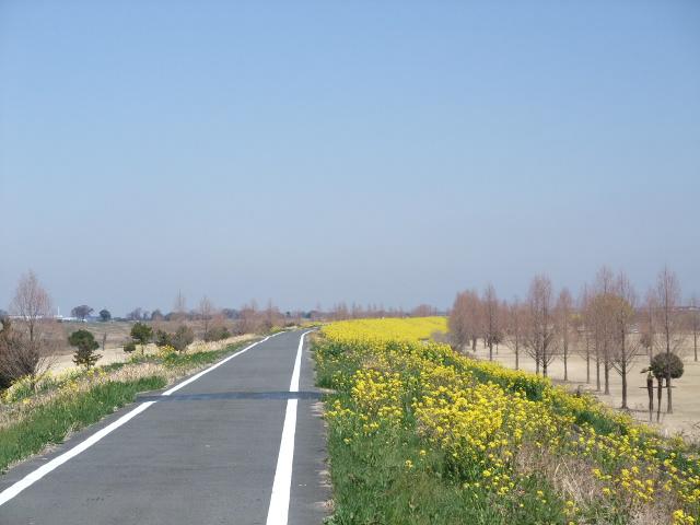 Blog2011_04010009