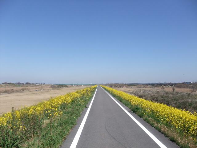 Blog2011_04010010
