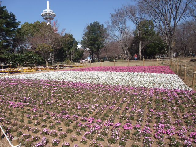 Blog2011_04050015