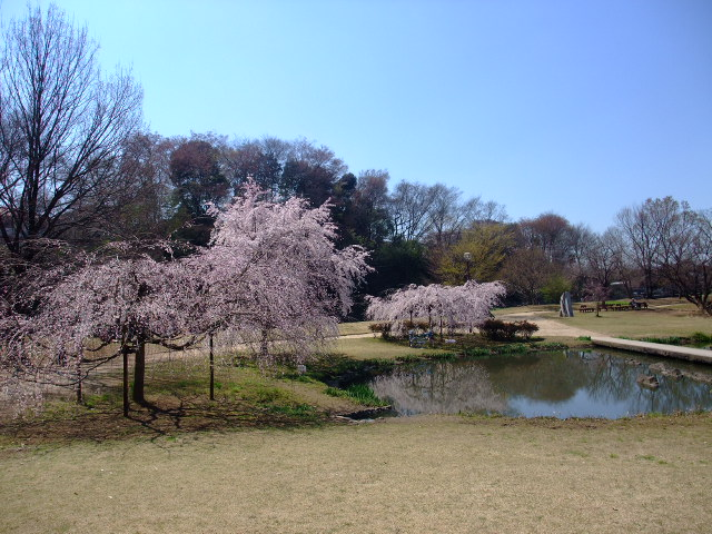 Blog2011_04060018