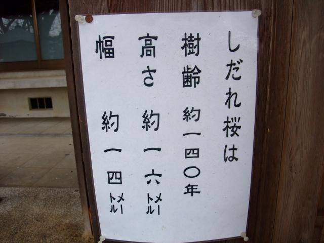 Blog2011_04070064