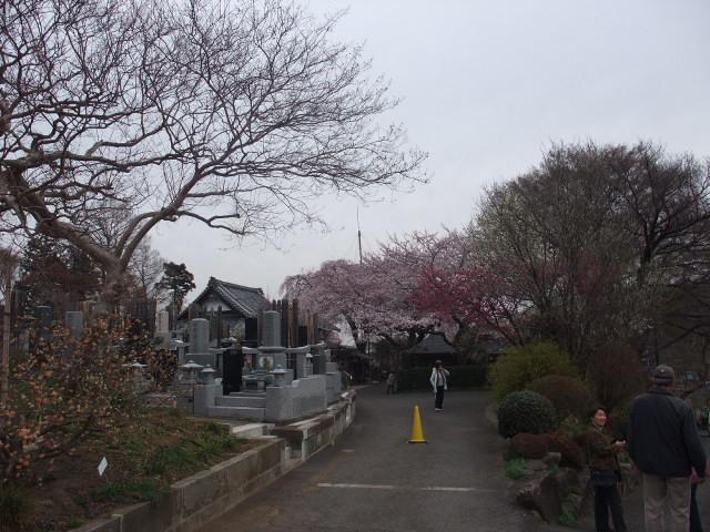 Blog2011_04070086