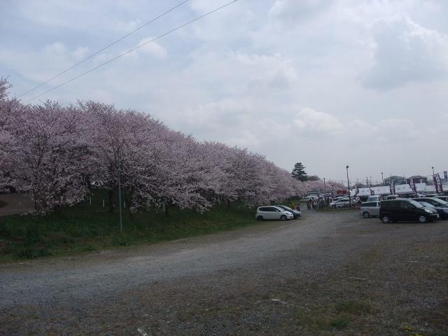 Blog2011_04120051