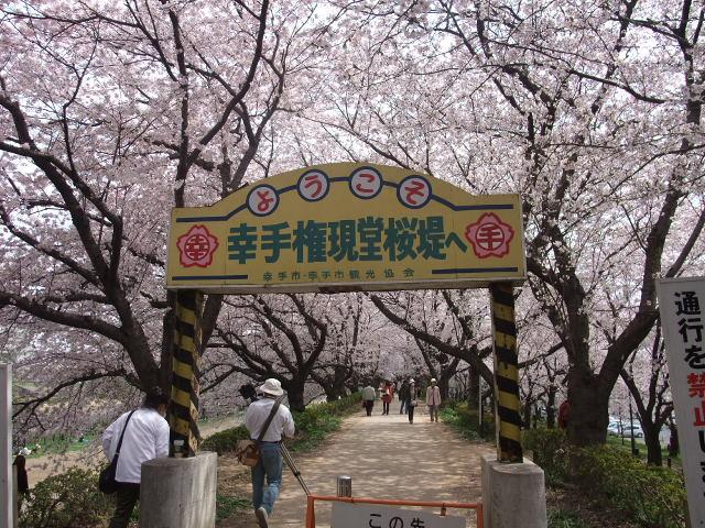 Blog2011_04120054