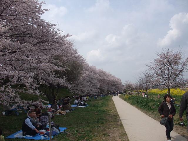Blog2011_04120065
