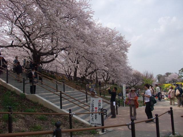Blog2011_04120067