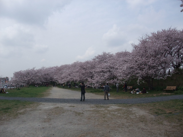 Blog2011_04120072