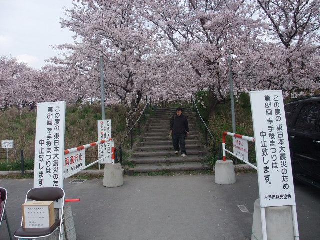 Blog2011_04120078