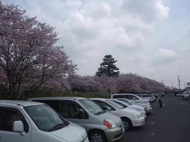 Blog2011_04120081
