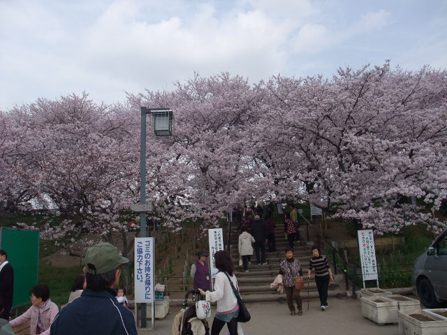 Blog2011_04120083