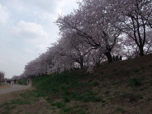 Blog2011_04120084