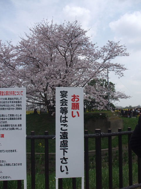 Blog2011_04120088