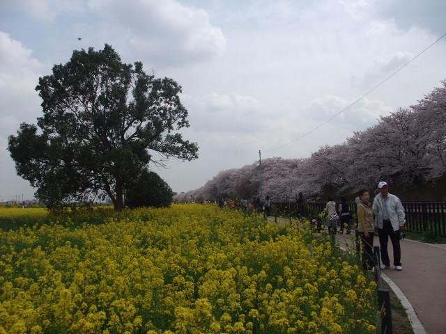 Blog2011_04120090
