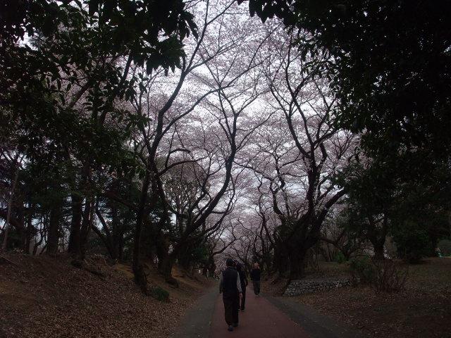 Blog2011_04070109