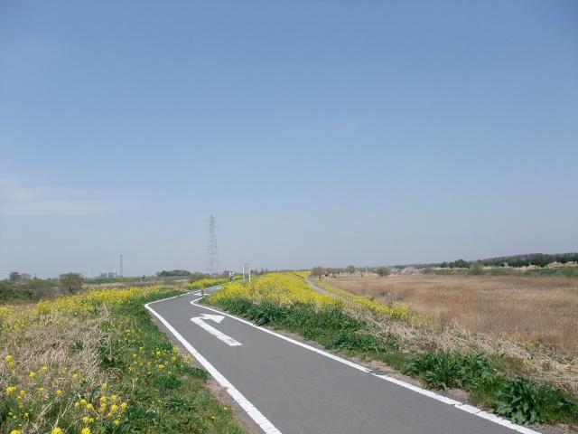Blog2011_04150007