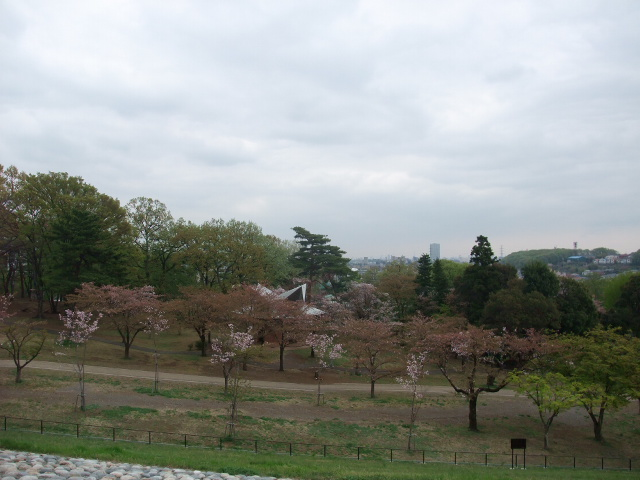 Blog2011_04180015
