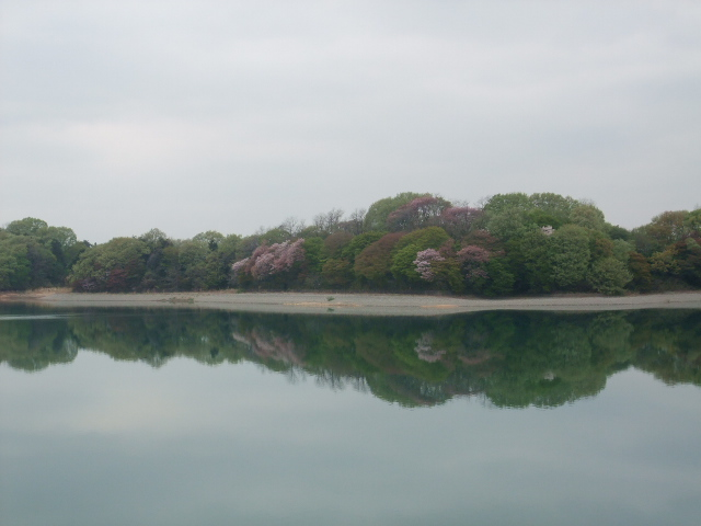 Blog2011_04180016