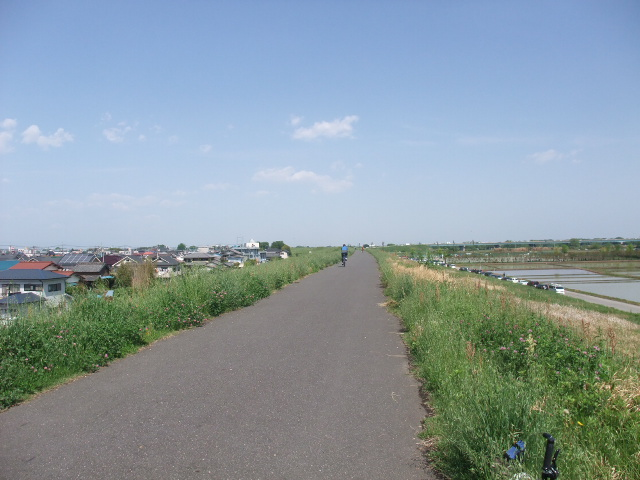 Blog2011_05080012