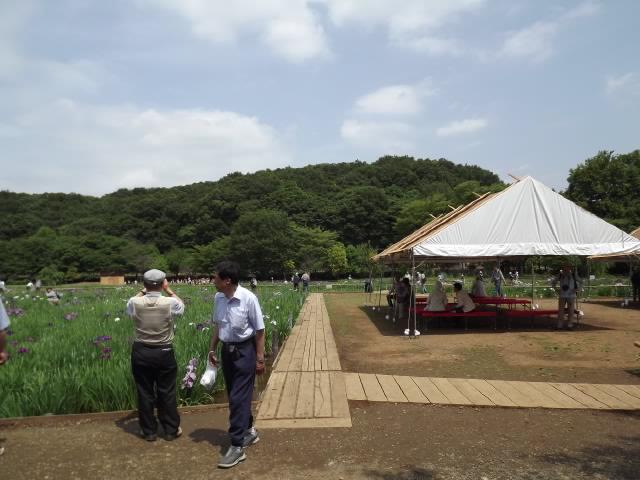 2011_06090044