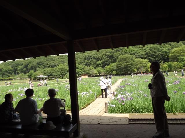 2011_06090045