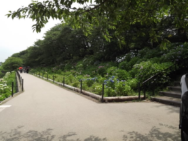 2011_06200087